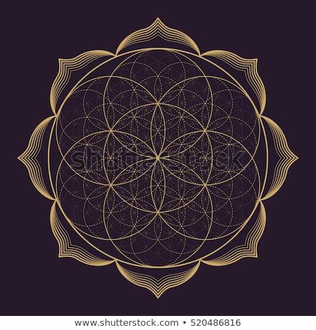 ベクトル · 曼陀羅 · 幾何 · 実例 · 金 - ストックフォト © trikona
