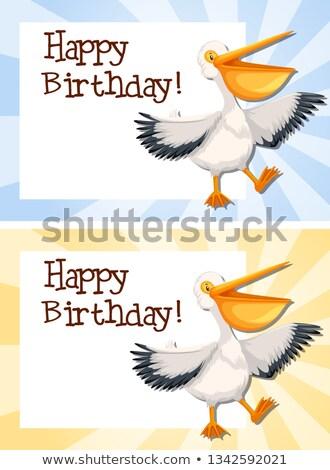 Pelican on birthday border Stock photo © bluering