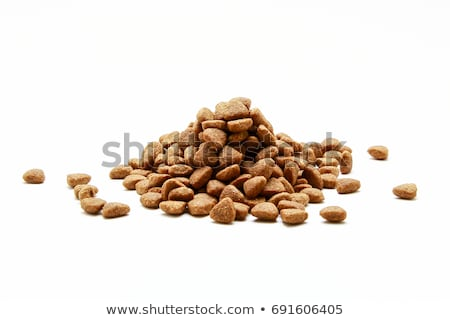 Dry cat food Stock photo © AGfoto