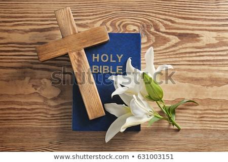 Biblii krzyż święty Zdjęcia stock © AndreyPopov