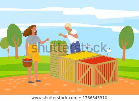 vetés · nő · ültetvény · zöldségek · izolált · vektor - stock fotó © robuart