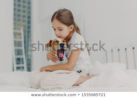 Fair haired small girl with pony tail wears casual pyjamas, embraces dog who yawns, pose together on Stock photo © vkstudio