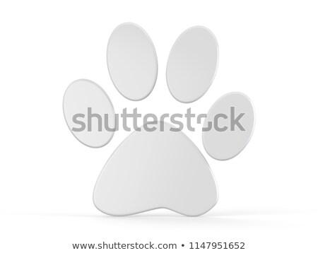 白 足 3D 3dのレンダリング 実例 孤立した ストックフォト © djmilic