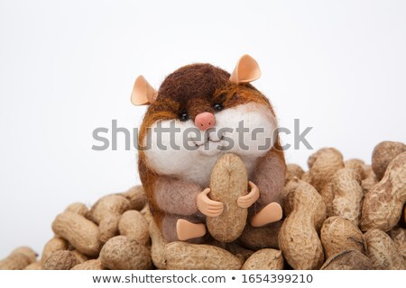 handmade artificial chipmunk with peanuts on a bunch of nuts on  Stock photo © mizar_21984