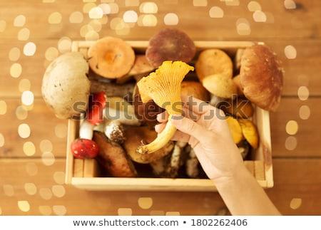 木製 ボックス 異なる 食用 キノコ 自然 ストックフォト © dolgachov