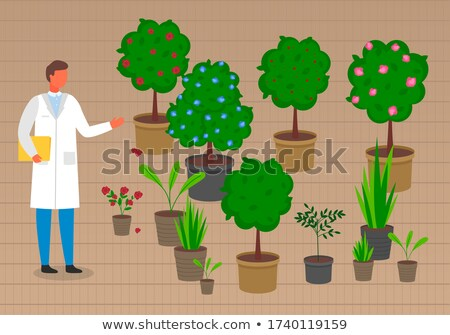 Grower or laboratory assistant near pots with trees, sprouts, flowers, plants in pots with soil Stock photo © robuart