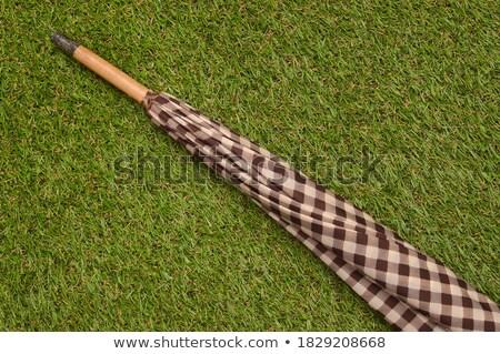 Brown umbrella on green grass  stock photo © sasilsolutions