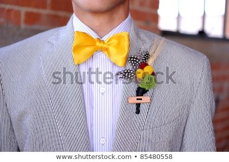 öltöny citromsárga kép üzlet iroda divat Stock fotó © gregory21