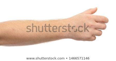 Kéz markolás izolált fehér sport fém Stock fotó © ozaiachin