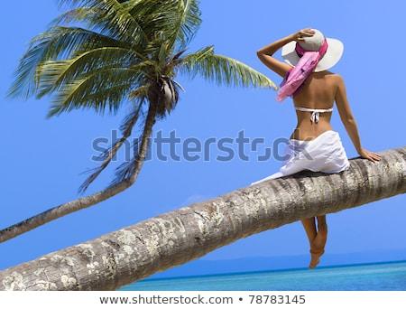 mooie · vrouw · tropisch · strand · bikini · palmboom · idyllisch - stockfoto © chrascina