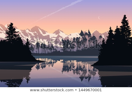 conifer forest with fjord in background Stock photo © gewoldi