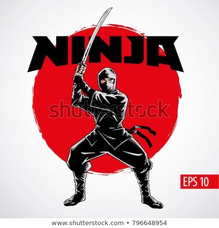 Ninja lutador ilustração espada sujo exercer Foto stock © vectomart