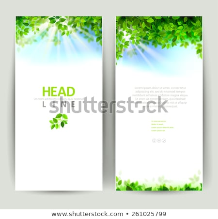 four brightly colored spring backgrounds stock photo © karolinal