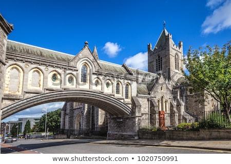 Krisztus templom Dublin gótikus építészet stílus Stock fotó © claudiodivizia