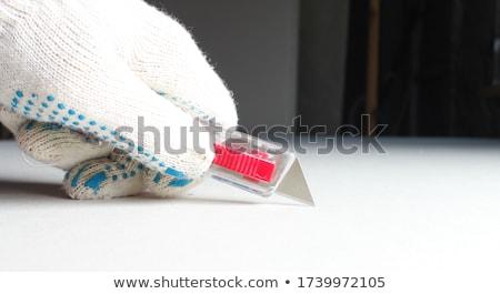 Utilidade faca isolado branco caixa aço Foto stock © Gordo25
