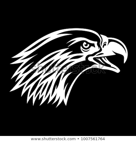 bald eagle head as usa symbol for mascot or emblem design such a logo stock photo © hermione