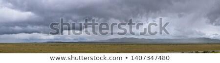 Gyönyörű tájkép western Egyesült Államok Idaho ranch Stock fotó © cboswell