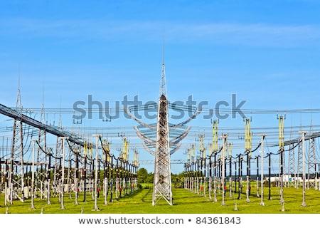Elektomos erőmű gyönyörű színes legelő virág Stock fotó © meinzahn