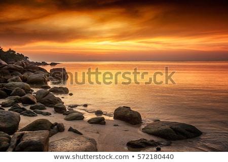 Strand schipbreuk bewolkt zonsondergang landschap zomer Stockfoto © Kayco