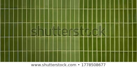 Green mosaic tiles Stock photo © elxeneize
