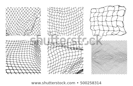 football in the goal net Stock photo © tungphoto