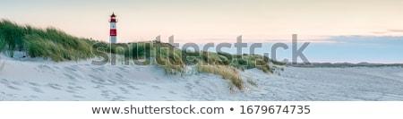Farol praia belo outono dia céu Foto stock © StephanieFrey