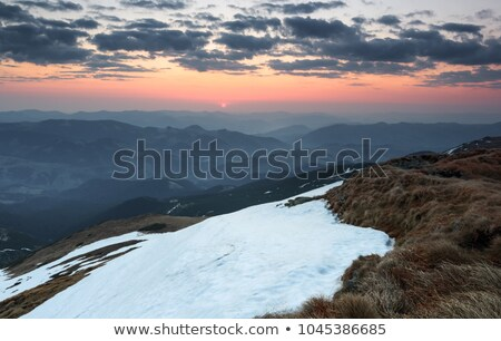 Winter landscape view fields forests covered snow rays sun Stock photo © fotoaloja