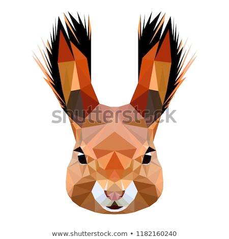 squirrel head vector animal illustration for t shirt stock photo © hermione