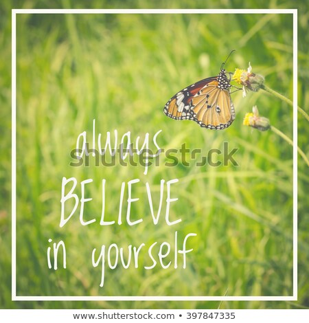 Always Believe In Yourself Stock photo © stevanovicigor