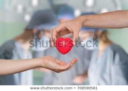 Orgel schenker illustratie schenken vrouw glimlach Stockfoto © adrenalina
