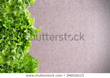 Border of crisp California lettuce on textile Stock photo © ozgur