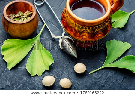ginkgo tea stock photo © joannawnuk