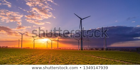 group of wind turbines in germany stock photo © amok