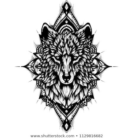 cervo · testa · mascotte · logo · etichetta - foto d'archivio © carodi