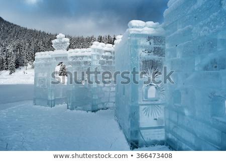 Tree blocks of ice Stock photo © Givaga