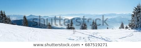 tél · hegyek · fagyos · reggel · falu · legelő - stock fotó © Kotenko