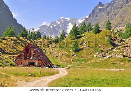 Wooden house in the mountains  Stock photo © Kotenko