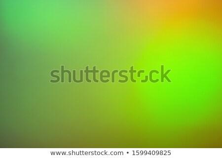 Blurred green lights circular bokeh abstract for Christmas back Stock photo © stoonn