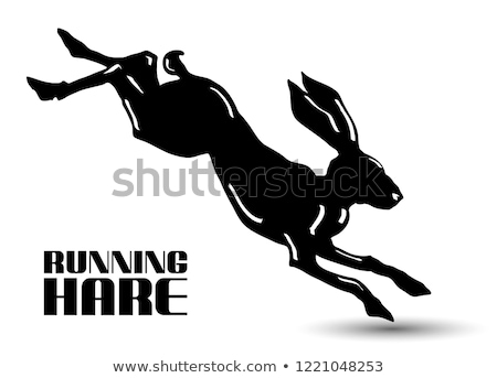 Icon of hare silhouette with target Stock photo © angelp
