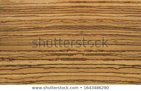 ストックフォト: テクスチャ · ツリー · 木材 · 壁 · デザイン · ヴィンテージ