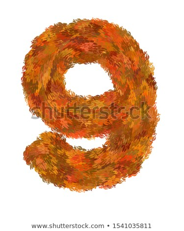 Colorful letters and numbers in autumn theme Stock photo © adrian_n