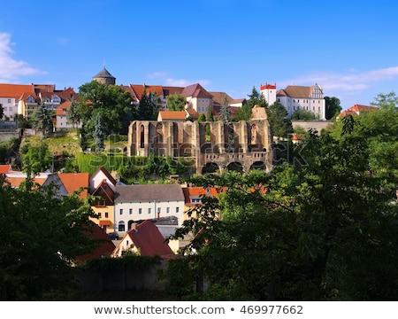 Castelo igreja arruinar Alemanha água cidade Foto stock © LianeM