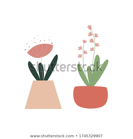 Snowdrop - minimalistic flat design illustration Stock photo © orson