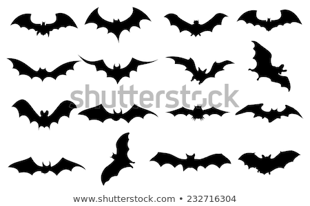 Bat with wings spread logo illustration Stock photo © jeff_hobrath