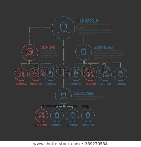 Vetor esquema modelo diagrama linhas Foto stock © orson