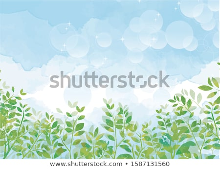 Green leaf background in a refreshing forest Stock photo © artrachen