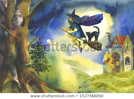 halloween witch and cat flying moon scene stock photo © krisdog