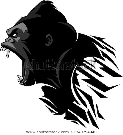 majom · alacsony · vektor · szimbólum · absztrakt · állat - stock fotó © barsrsind