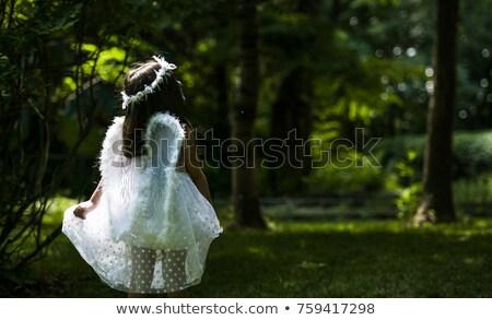 Nina princesa campo nino jóvenes jóvenes Foto stock © IS2