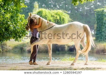 Petting the horse Stock photo © IS2